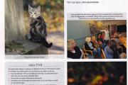 Reportage i tidning Kattliv om TNR projektet i Backa Röd