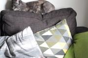 Vega och Lyra